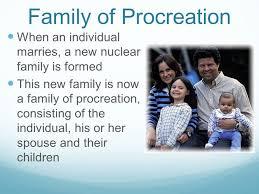 procreation family definition essay   essay for you  procreation family definition essay   image