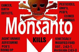 Image result for monsanto cancer