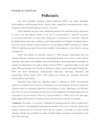 example of a great essay template example of a great essay