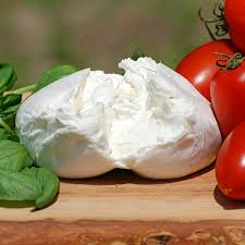 Image result for burrata