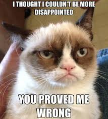 The 50 Funniest Grumpy Cat Memes | Complex via Relatably.com