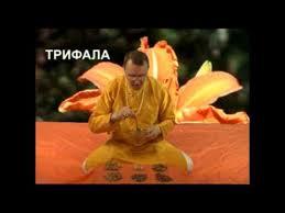 Triphala tablets (<b>Трифала</b> таблетки) <b>60</b> таб. по 1000 мг Sangam ...