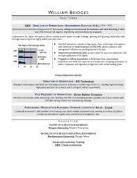 CEO sample resume; award winning resume writer serving Chicago ... for your executive resume needs?