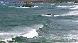 <b>Surfing</b> & <b>Scuba Diving</b> | SonomaCounty.com