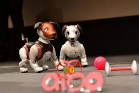<b>Paw patrol</b>: Sony's robocop <b>dog</b> aibo keeps an eye on the elderly ...