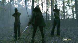 Image result for michonne walking dead