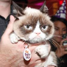 Grumpy Cat | POPSUGAR Tech via Relatably.com
