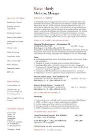 ceo marketing strategist resume samples  good resume objective     s manager cv example