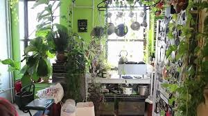Kitchen Herb Garden Design Indoor Vertical Kitchen Herb Garden Jardinagem Garden