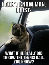 Introspective-Pug.jpeg via Relatably.com