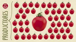 Resultado de imagen de Caniles tomato