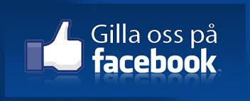 Bildresultat för ikonen för facebook