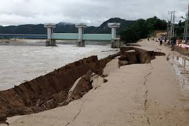 """Green"" New Deal Projects Threaten <b>Korea's</b> Rivers and <b>Tidal</b> Flats ..."