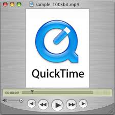 Image result for quicktime player logo