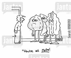 Image result for cartoon nuts