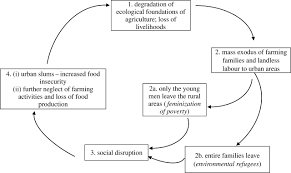 strategies and models for agricultural sustainability in figure