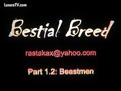 Most Relevant Videos Mexzoo Compilation Animal Sex Beastzoo