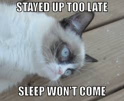 Grumpy Cat: sleep won't come | Grumpy Cat | Know Your Meme via Relatably.com