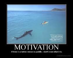 extrinsic-motivation-shark.jpg via Relatably.com