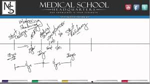 pre med the roadmap to becoming a doctor pre med 101 the roadmap to becoming a doctor