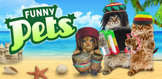 Funny cats. <b>Funny dogs</b>. - Apps on Google Play