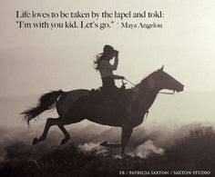 Horse Quotes on Pinterest | Horses, Horse Love and Riding Quotes