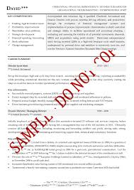 executive cv examples the cv store executive cv example finance director