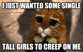 I just wanted some single Tall girls to creep on me - Sad cat ... via Relatably.com