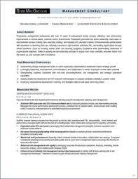job search strategies   executive resume services     organizational leadership resume page