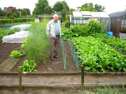 Small Picture Earth Grown Gardening Uncategorized