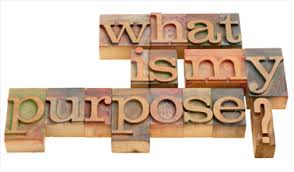 Image result for know your purpose in life