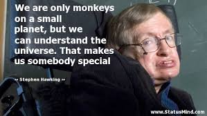 Stephen Hawking Quotes at StatusMind.com via Relatably.com