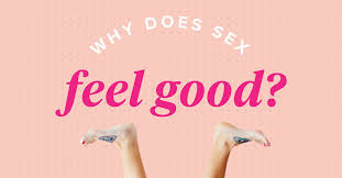 Why Does <b>Sex</b> Feel Good for Men and Women?