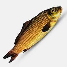 <b>Appearing Fish</b> (<b>28cm</b>) <b>Magic</b> Tricks Fish Appearing From Card ...