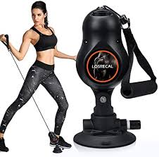LOSRECAL Home Gym Equipment Removable ... - Amazon.com