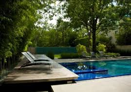 Small Picture Nature Modern Wooden House Garden And Swimming Pool At Dallas