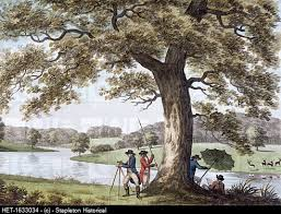 Small Picture The 60 best images about Lancelot Capability Brown on Pinterest