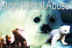 Stop Animal Abuse Quotes. QuotesGram