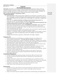 business analyst resume   experience summary