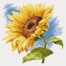 ВЫШИВКА(цветы) | Цветы, вышитые крестиком, Вышивание ...