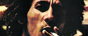 <b>Bob Marley</b>: <b>Catch</b> A Fire - The Real Story Behind The Album