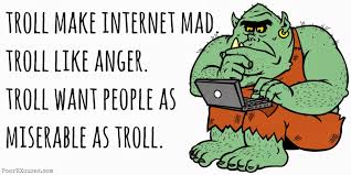 Image result for troll