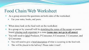 worksheet food web worksheet answers worksheet worksheet food web worksheet answers food web worksheets answers quiz worksheet marine bio chain trophic levels