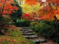<b>180</b> Best landscape <b>Trex</b> images | Outdoor gardens, Landscape ...