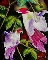 「Parrot Flower」的圖片搜尋結果