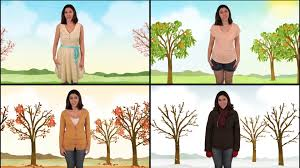 let s learn about the four seasons spring summer fall and let s learn about the four seasons spring summer fall and winter science for kids
