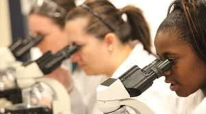 Image result for health science pictures