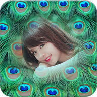 <b>Peacock Feather</b> Photo Frame APK 1.0.7 - download free apk from ...