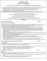 word brain teasers worksheets answers breakupus sweet resume resume social studies teacher resume social studies teacher resume