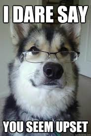 I dare say You seem upset - Intelligent Husky - quickmeme via Relatably.com